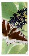 Butterfly - Swallowtail - Photopower 140 Bath Towel
