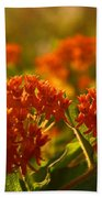 Butterfly Weed In The Sunset Bath Towel