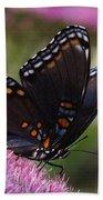 Butterfly Wings Bath Towel
