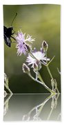 Butterfly With Reflection Bath Towel