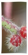Cactus Berries Bath Towel