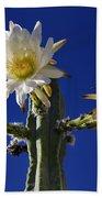 Cactus Blooms Bath Towel