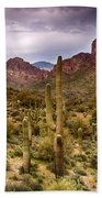 Cactus Canyon  Bath Towel