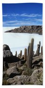 Cactus Forest And Salar De Uyuni Bath Towel