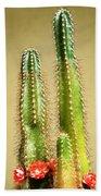 Cactus Towers Bath Towel