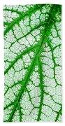 Caladium Leaf  Bath Towel