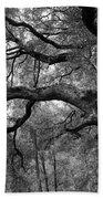 California Black Oak Tree Bath Towel