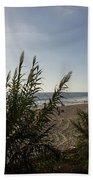 California Carlsbad Beach Hidden View Bath Towel