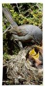 California Gnatcatcher Feeding Young Bath Towel