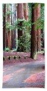 California Redwoods 3 Bath Towel