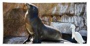 California Sea Lion Bath Towel
