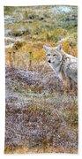 Camo Coyote Bath Towel
