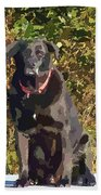 Camouflage Labrador - Black Dog - Retriever Bath Towel