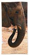 Camouflaged Elephant Bath Towel