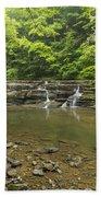 Campbell Falls 6 Bath Towel