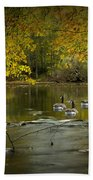 Canada Geese In Autumn Swimming On The Thornapple River Bath Towel