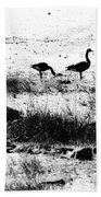 Canada Geese In Black And White Bath Towel
