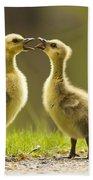 Canada Goose Babies Bath Towel