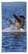 Canada Goose Pictures 111 Bath Towel