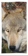 Canis Lupus  Bath Towel