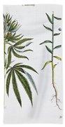 Cannabis And Flax Bath Towel