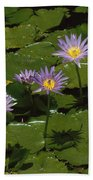 Cape Blue Water-lily Group Blooming Bath Towel