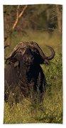 Cape Buffalo   #6851 Bath Towel