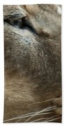 Captivating Eyes Bath Towel