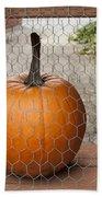 Captive Pumpkins Bath Sheet