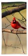 Cardinal Beauty Bath Towel