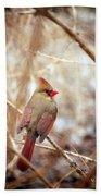 Cardinal Birds Female Bath Towel