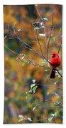 Cardinal In Autumn Bath Towel