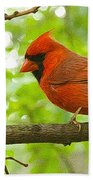 Cardinal In Red Bath Towel
