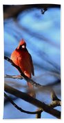 Cardinal In The Midst Bath Towel