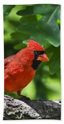Cardinal Red Bath Towel