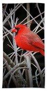 Cardinal Red With Black Bath Towel