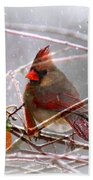 Cardinals - Male And Female - Img_003card Bath Towel