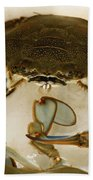 Carolina Blue Crab Bath Towel