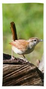 Carolina Wren Bath Towel