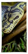 Carpet Python  Bath Towel