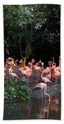 Cartoon - Flamingos In Their Exhibit Along With A Small Lake In The Jurong Bird Park Bath Towel