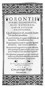 Cartouches, 1544 Bath Towel