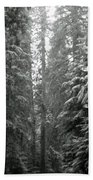 Cascade Snow Bath Towel