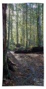 Cascades Forest Path Bath Towel