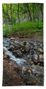 Cascades Of The Forest Bath Towel