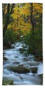 Cascades On The Motor Nature Trail Bath Towel