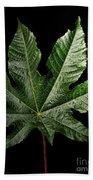 Castor Bean Leaf Bath Towel