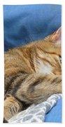 Cat Nap Bath Towel