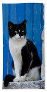 Cat On A Greek Island Bath Towel