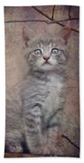 Cat's Eyes #02 Hand Towel